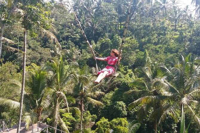 "Private East Bali ""Lempuyang gate heaven, Ubud and Waterfalls "" Day Tour"