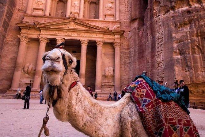 Petra & Wadi Rum - One day tour
