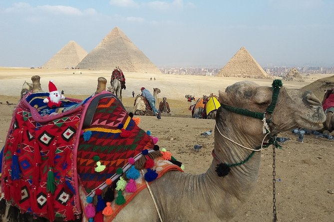 Giza pyramids and camel ride start from 15Us dollars