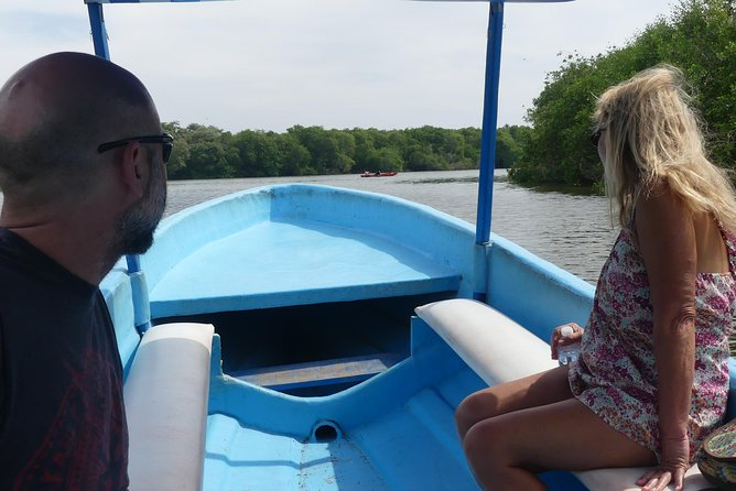 3 Palos Lagoon Jungle Tour Baby Turtle Release Boat Ride, Lunch Drinks