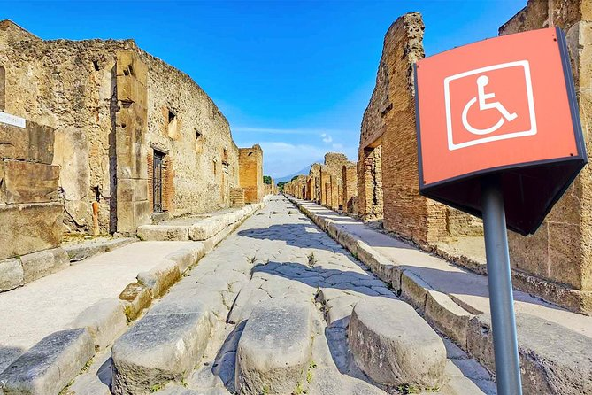 Accessible Pompeii Tour in Wheelchair with Skip-the-line Tickets & Private Guide