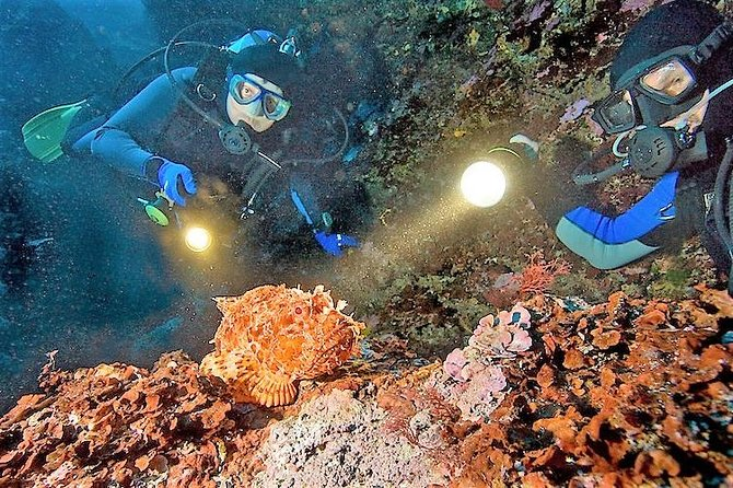 1-Tank guided Night Dive for certified divers with own equipment
