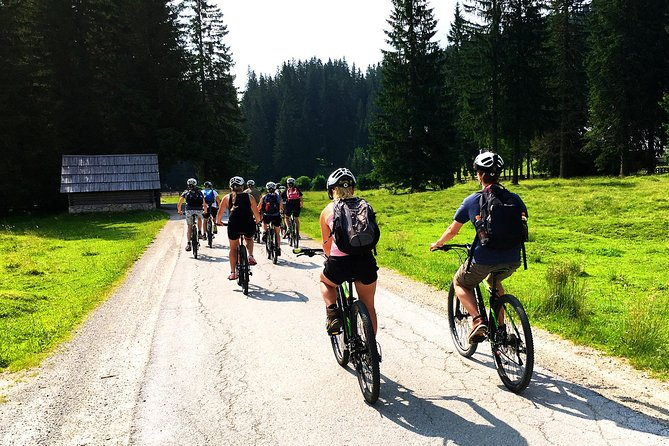 Lake Bohinj from Bled: Self-Guided Cycling Tour