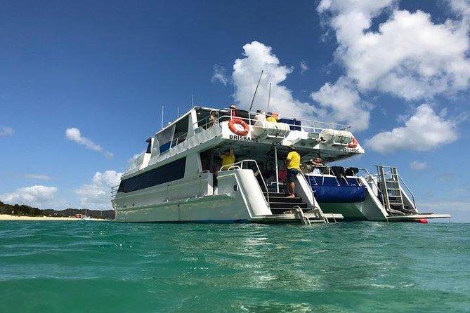 Eco Marine Safari - Redes de pesca e mergulho com snorkel Moreton Island - Fortitude Valley