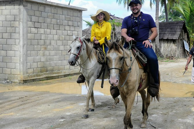 Beach Horseback Riding Baby Turtle Release with Mexican Lunch Included