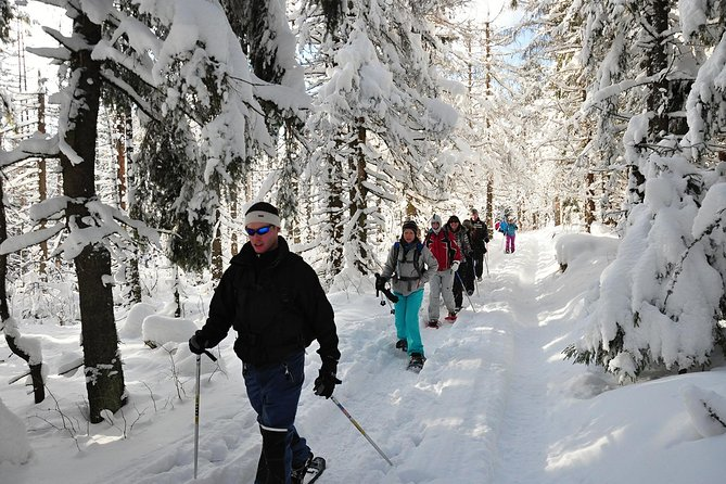 Snowshoeing in High Tatras: Zdiar to Bachledova Valley photo 6