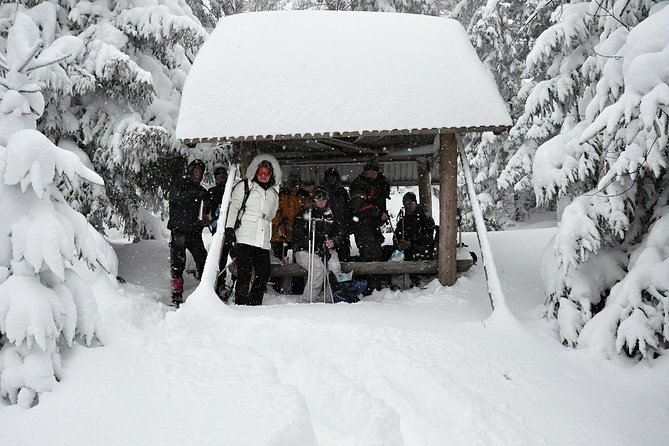 Snowshoeing in High Tatras: Zdiar to Bachledova Valley photo 12