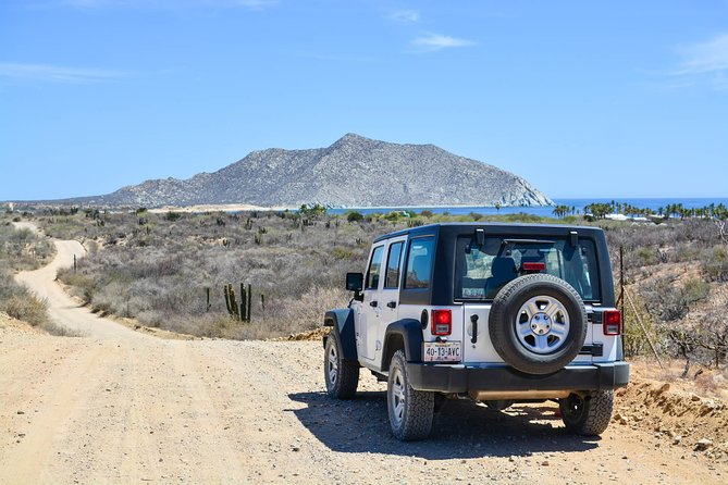 Private Tour Baja Jeep 4x4 Adventure at Los Cabos