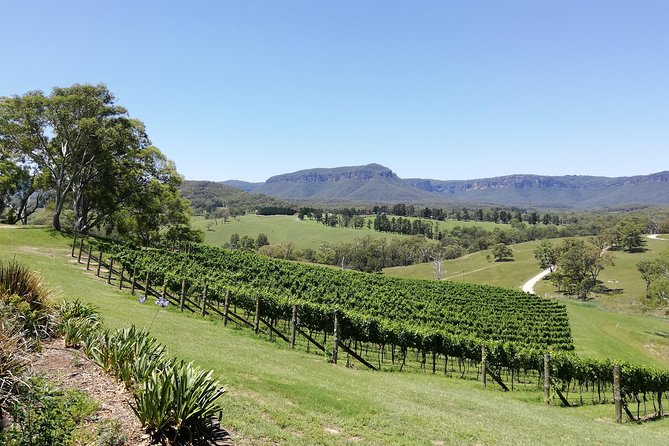 Tours in Sydney Australia | Wines, Hikes & Lookouts in Blue Mountains