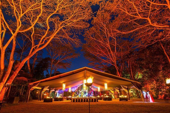 Flames of the Forest Dining Experience