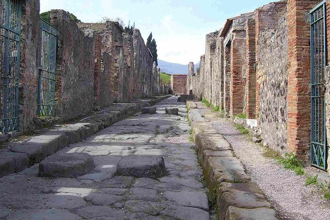 Pompeii guided Walking Tour with Entrance Ticket photo 3
