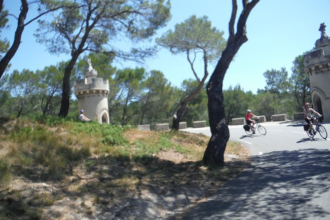 Private Guided Bike Tour Around Saint Rémy and the Provencal Countryside