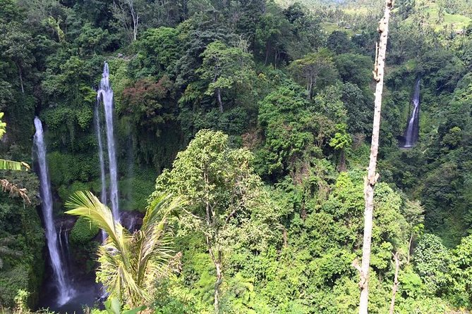 Private Tour: Jatiluwih Rice Terrace and Munduk Waterfall Tour