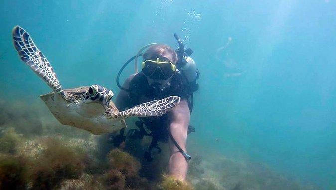 Beginners Scuba Diving Tour in San Juan