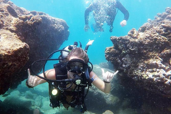 No Certification Required Guided Scuba Diving Tour photo 1