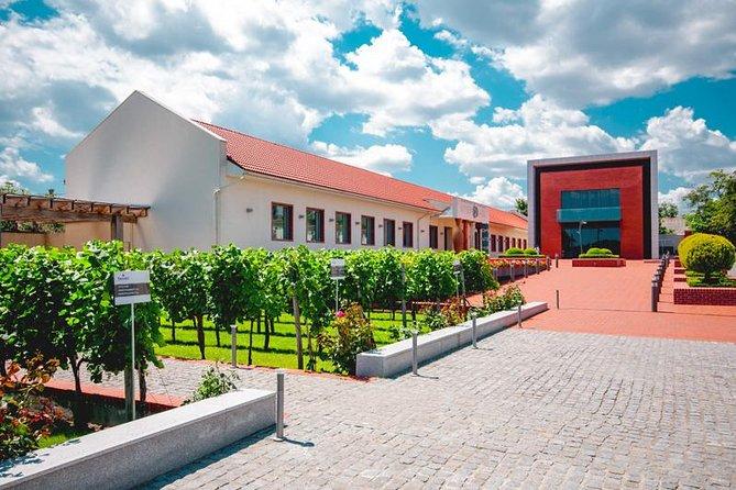Full-Day Shabo Wine Culture Center Private Tour in Odessa