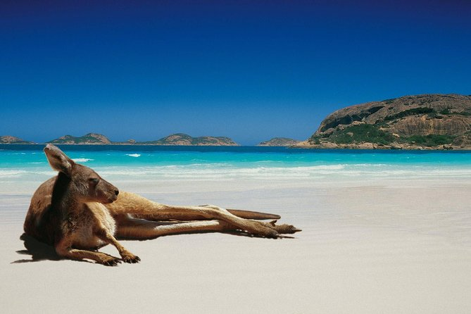 Aroha Tangata Australia and New Zealand 15 day image
