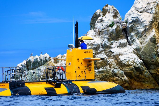 45-Minute Semi-Submarine Tour of Catalina Island From Avalon