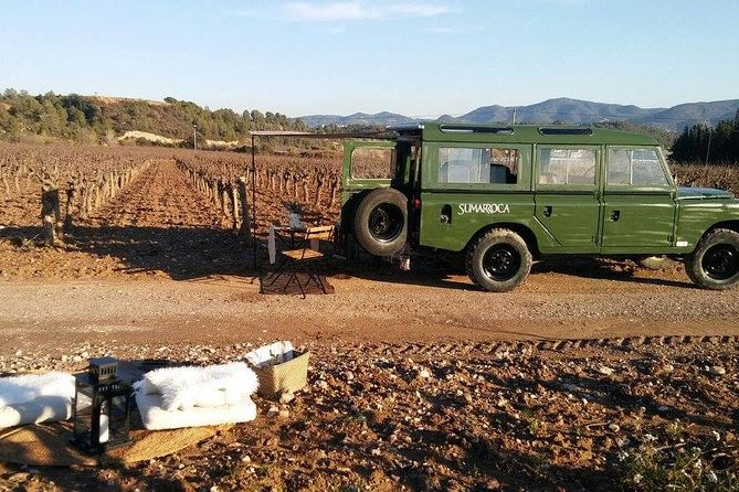 Private Winery and Vineyard Tour with Wine Jeep from Barcelona by Minivan