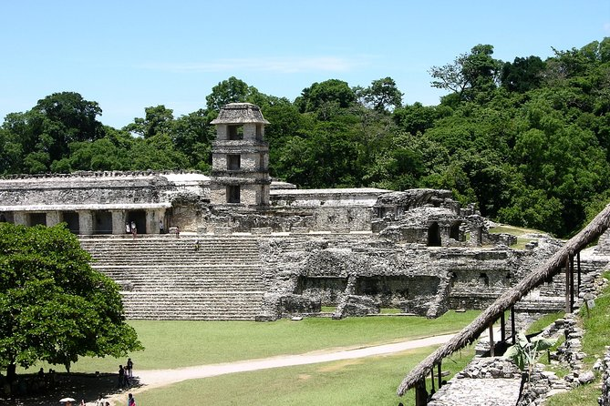 Skip the Line: Palenque Archaeological Site Admission Ticket