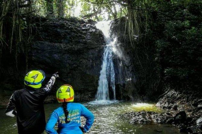 Kauai Waterfall Picnic Tour and Off-Road Adventure