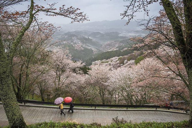 Nara Like a Local: Customized Private Tour