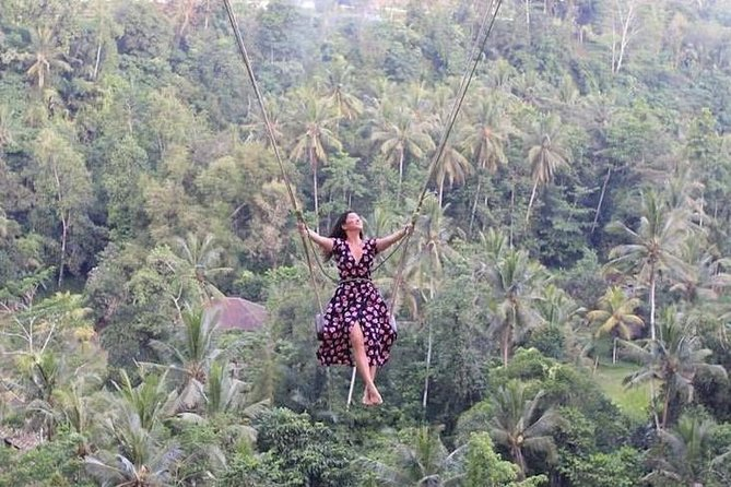 Bali Swing,Coffee Plantation And Waterfall All Include Tour
