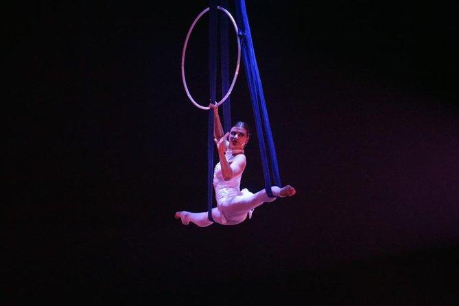 Private Tour: Shanghai Acrobatic Show and Authentic Dim Sum