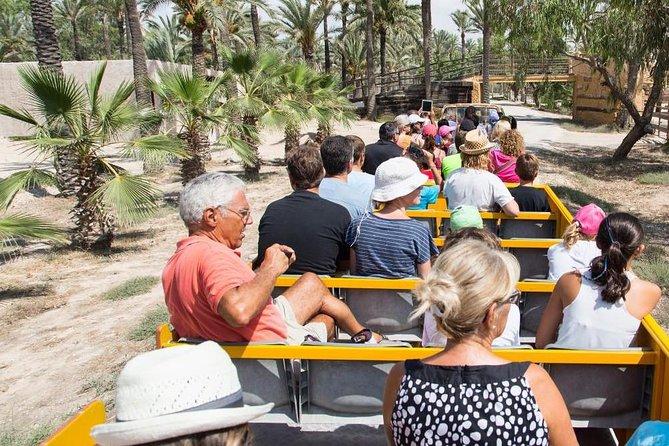 Rio Safari Elche met vervoer vanuit Benidorm