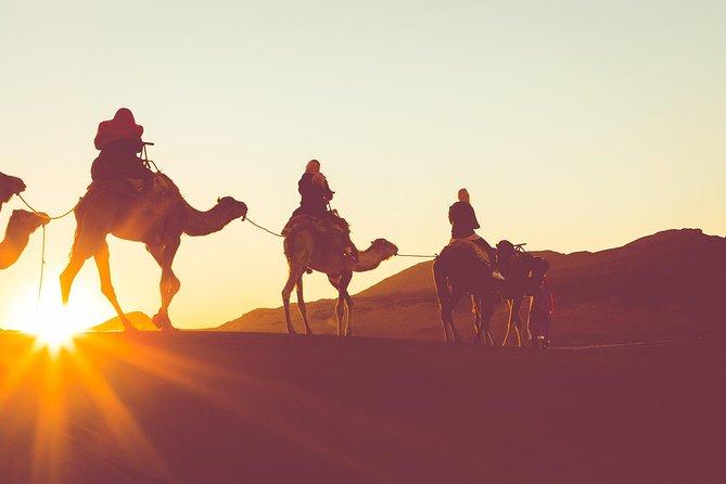 Sunset or Sunrise Camel ride