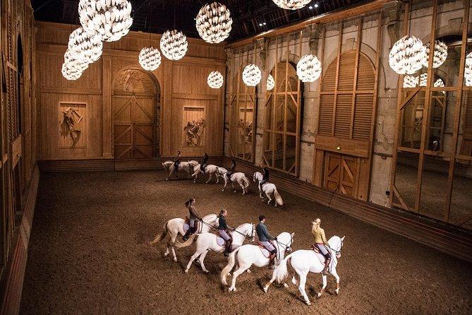 Equestrian show La Voie de l'écuyer 2020