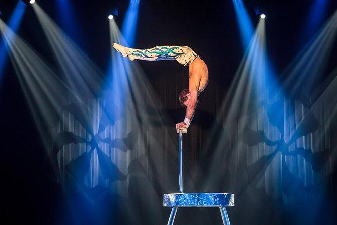 Circus Artistry of Ian Faraonel