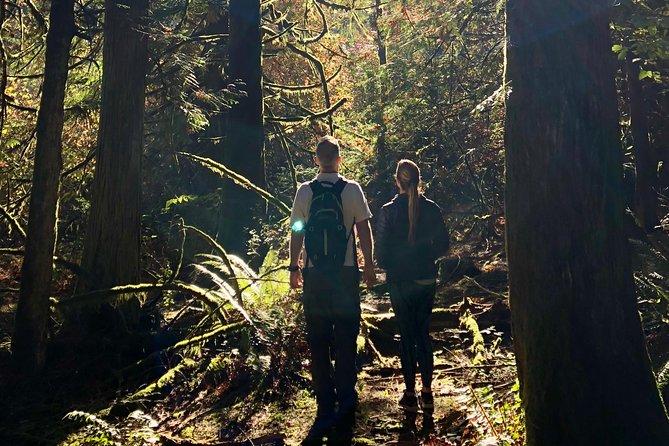 Mystical Rainforest Tour: Forest Bathing & Nature Mysticism