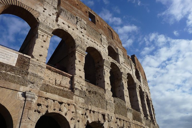from Civitavecchia: Skip the line Colosseum and Ancient Roman forum