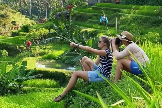 Bali in 1-Day: Temple, Waterfall, Coffee, Volcano, Rice Terrace and Monkey Tour