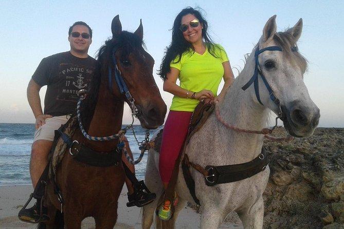 Aruba Private Horseback Riding Beach Tour