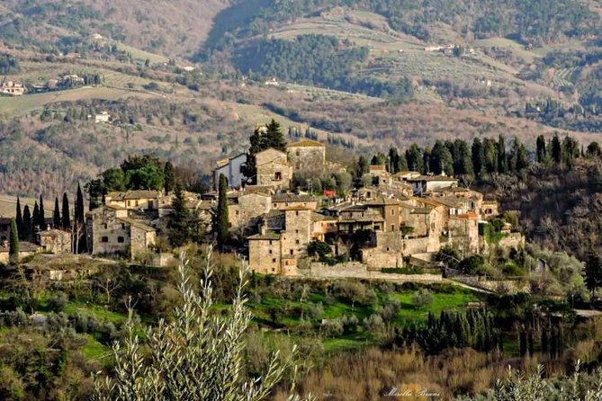 Chianti Tour with visit in cellar, tasting, lunch and medieval tower climbing