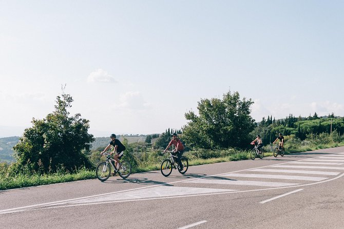 Bike tour and wine tasting in Tuscany from Florence