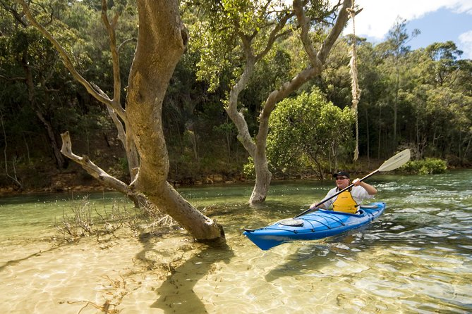 Sydney Single Kayak Hire on Pittwater - (2) Hours on Sit on Top or Sit in Kayak