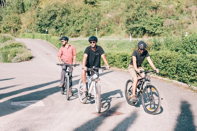 Bike tour and wine tasting from Siena
