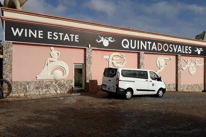 Wine Taste & Algarve Coast Tour