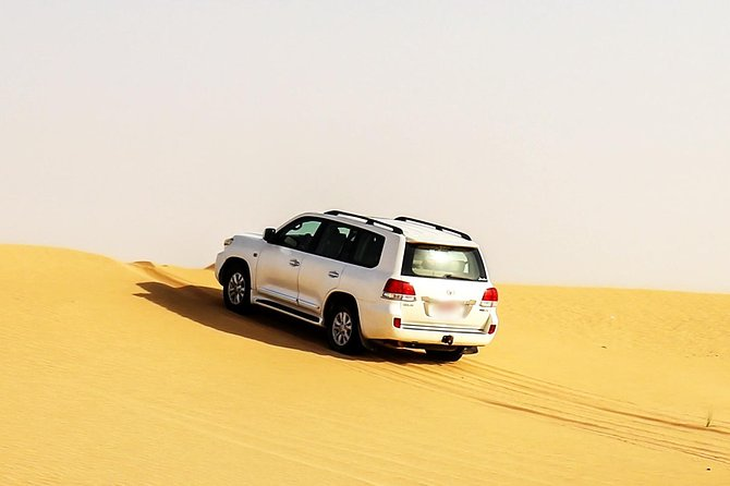 Thrilling Dubai Safari with Dune Bashing, Camel Riding, 3 Live Shows and More