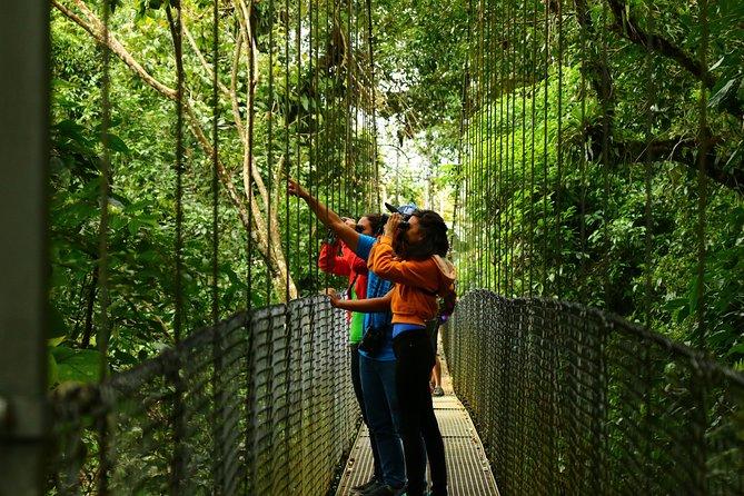 Mistico Hanging Bridges Park from La Fortuna