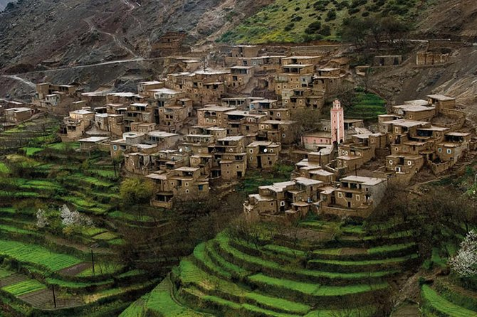 Atlas Mountains and Essaouira in 1 Night Only Private Tour From Marrakech