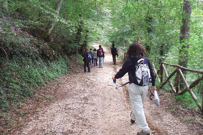 Guide to the woods of Faeto with tasting of the typical black pork prosciutto