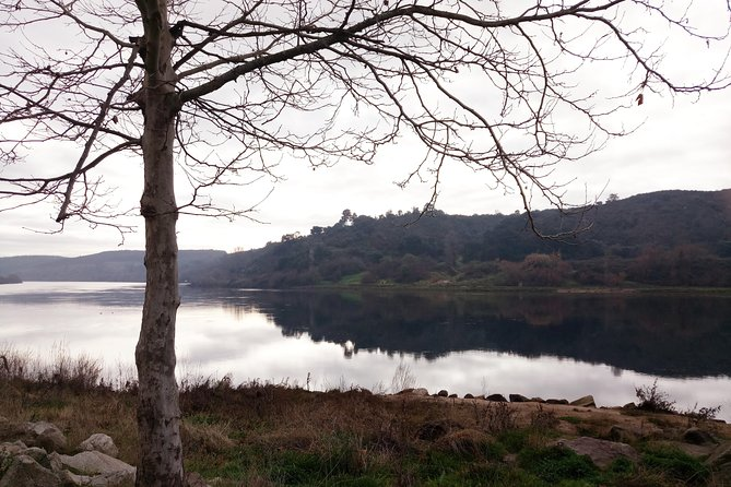 Knights Templar – Tomar, Almourol and Dornes - Private Tour from Lisbon