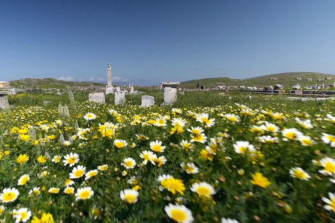 Half-Day Delos Tour from Mykonos photo 2
