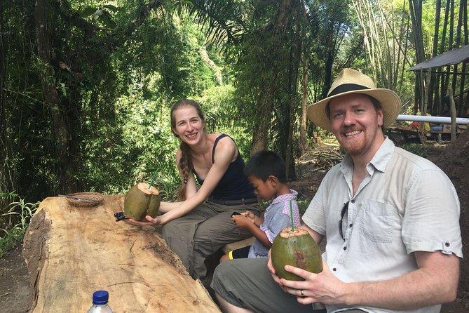 Jungle Trekking & Rice Fields