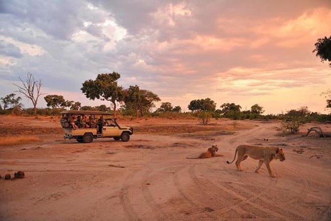 Early Morning Half-Day Chobe Safari