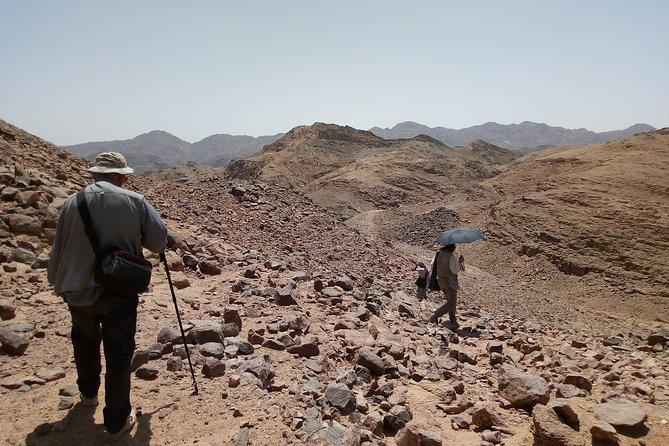 Appolonia and Qulaan Village - Wadi El Gemal